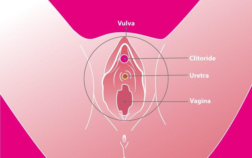 I punti più eccitanti masturbazione femminile